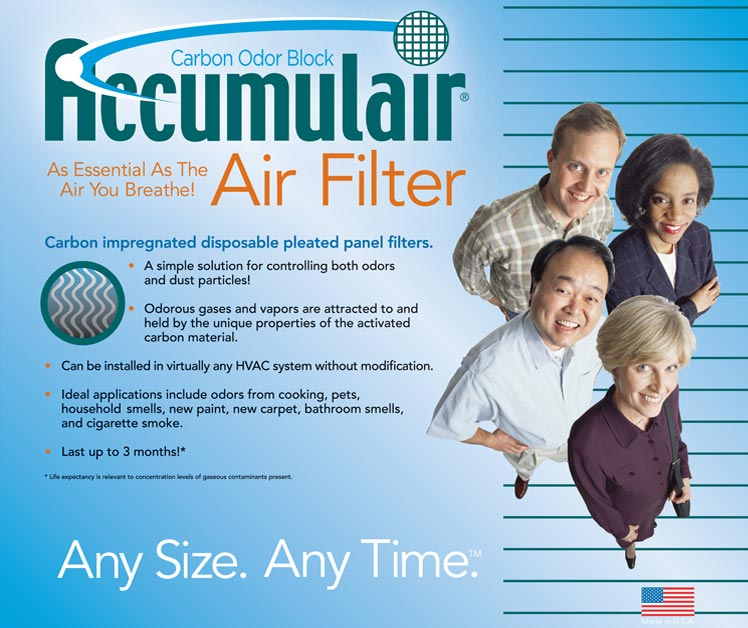 20x20x2 Day and Night® Carbon Replacement Filter